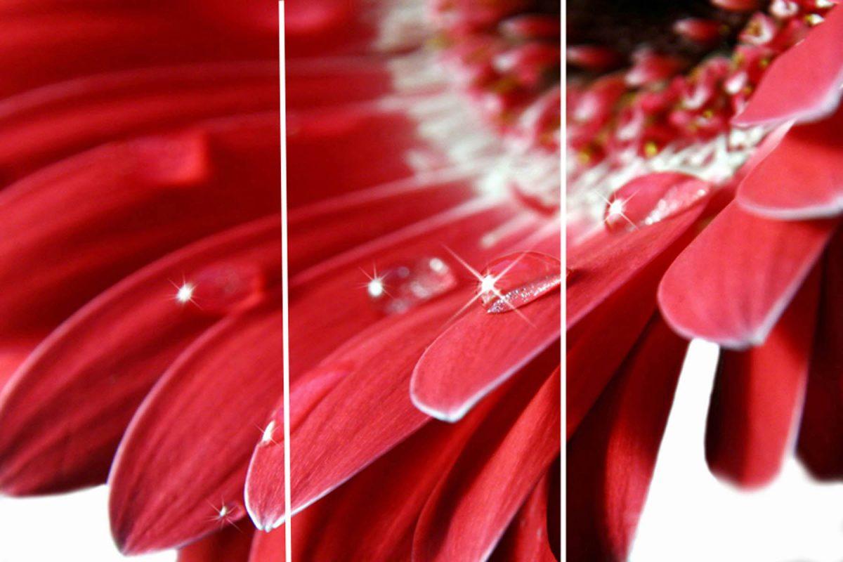 Set 3 canvas 30×60 red flower