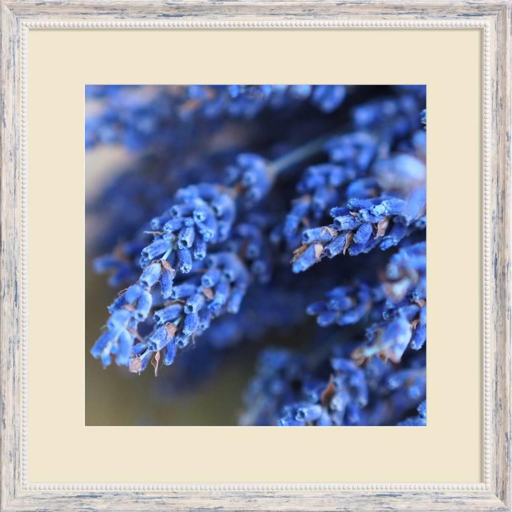 6550 04 40x40 s fw01 30x30 ppt 1005 framed prints single framed