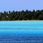Canvas 50×150 island