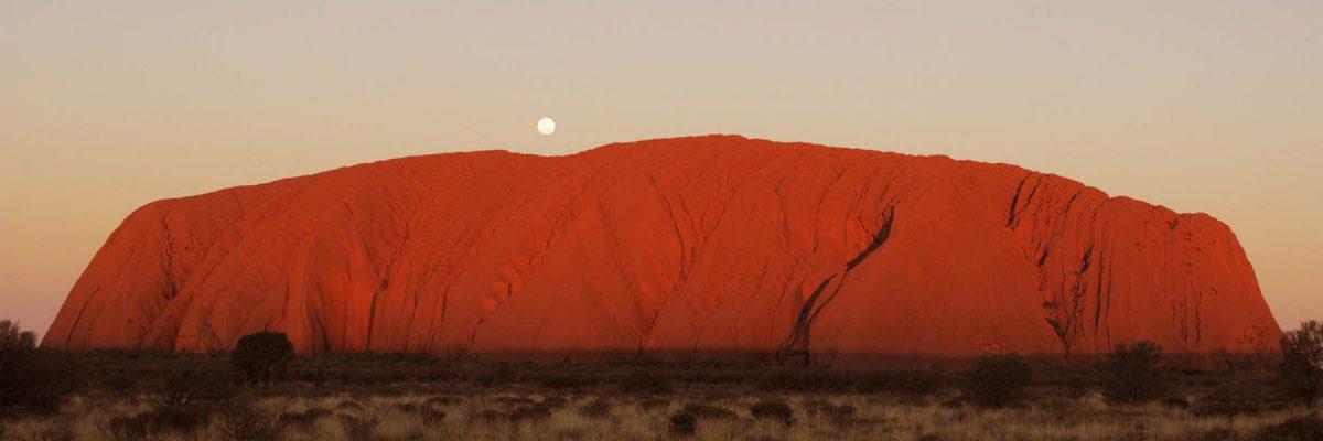 Canvas 50×150 australia