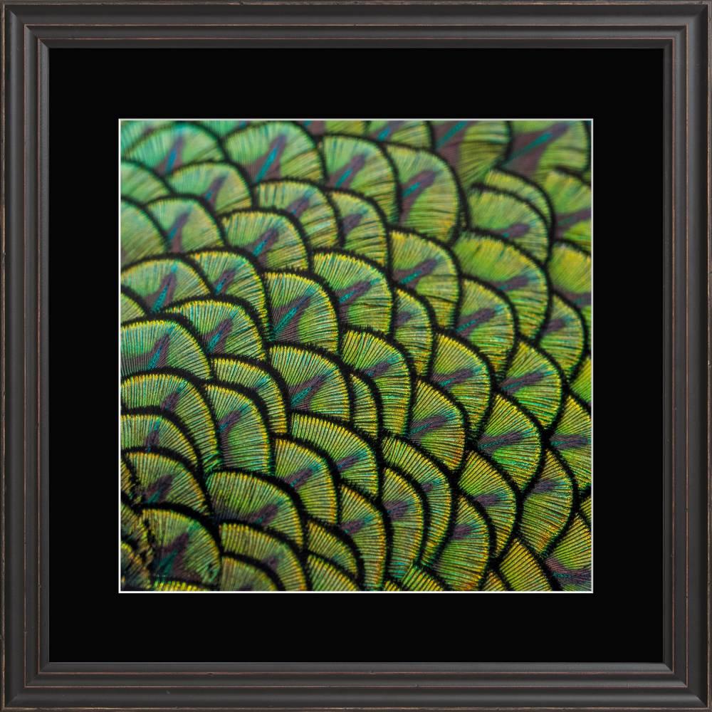 5445 01 40x40 s pm01 30x30 ppt 1009 single framed prints framed