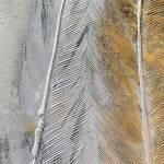 Dipinto art. z530 60×90